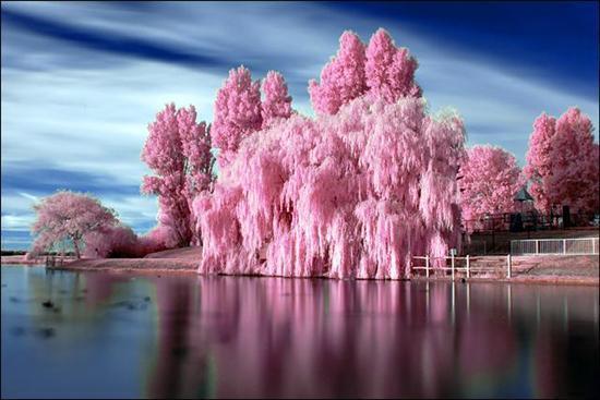 Image du Blog 1001images.centerblog.net